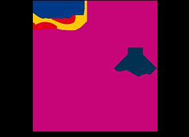 frl_saar_logo